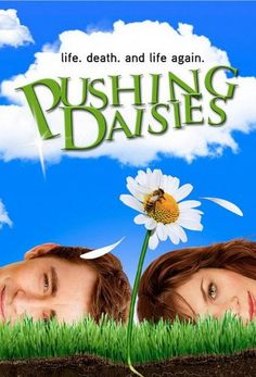 Pushing Daisies - One of the best shows ever! It was charming, quick, colorful and witty.