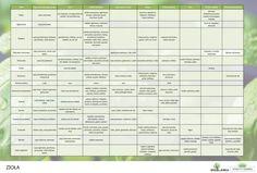 Kuchenne ABC w tabelce czyli jakie przyprawy i zioła do czego Periodic Table, Cooking, Food, Tables, Kitchen, Periodic Table Chart, Periotic Table, Essen, Meals