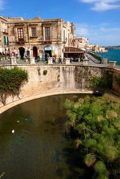 Greek Arethusa Fountain - Syracuse ( Siracusa) , Sicily