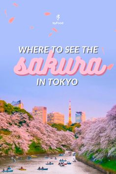 Sakura cherry blossom season is right around the corner! That means it's time to get your hanami flower-viewing game plan in order. Fully embracing the season of the cherry blossom in Tokyo is an absolute must if you're visiting Japan this year! Here are some of the top spots for cherry blossom viewing in Tokyo! 🌸#JapanByFood#Japan#JapanTravel#TravelJapan#JapaneseFood#JapaneseCulture#JapanEats#Wagashi#JapanFood #Tokyo #Spring #CherryBlossoms #Sakura #Kyoto #Osaka #TravelTips… Cherry Blossom Season, Sakura Cherry Blossom, Japan Destinations, Visit Japan, Japanese Culture, Japan Travel, Osaka, Kyoto, Travel Tips