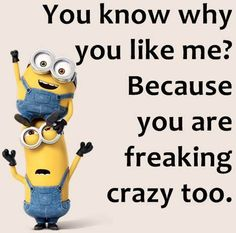 You Are Freaking Crazy Too funny minion minion quotes funny minion quotes minion quotes and sayings Funny Minion Memes, Minions Quotes, Funny Jokes, Minion Humor, Hilarious Quotes, Funny Teen Posts, Laughter Therapy, Minion Pictures, Seriously Funny