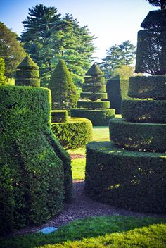 Learn topiary // Longwood Topiary Garden by Britt Conley Topiary Garden, Topiaries, Spring Flowering Trees, Festivals Around The World, Labyrinths, Longwood Gardens, Garden Park, Formal Gardens, Conservatories
