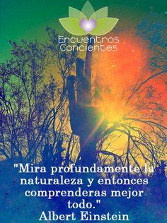 #albert #einstein #naturaleza #mirar #obserbar #meditacion #meditar #conciencia…