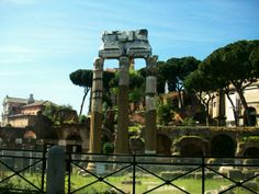 the Forum and palatine