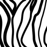 Found it at AllModern - Pattern - Zebra Stripes Stretched Wall Art