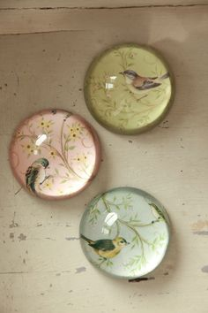 bird paperweights from the lavender room