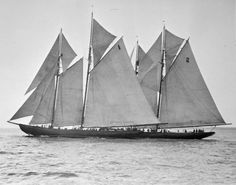 "Nova Scotia  International Fishing Schooners, ""Bluenose"" in the lead  Source - LAC"