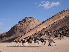 voyages dans le grand sud algerien, Tamanrasset, Djanet, Tassili,N ...