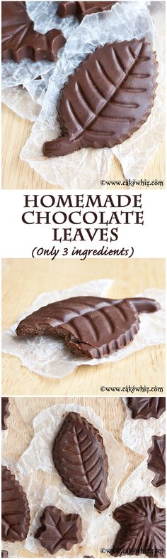 Easy, healthy homemade chocolate leaves... made with only THREE ingredients! They are also egg-free and dairy free! From cakewhiz.com