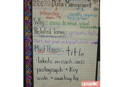 Data Management Anchor Chart