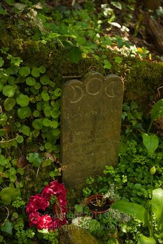 JOAN WYTTE: gravestone of the last of the persecuted witches in Cornwall. She died in 1813 and her skeleton was displayed in a museum. Finally laid to rest in 1998 in the grounds of The Museum of Witchcraft, Boscastle, North Cornwall. ✫ღ⊰n