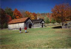 Grayson Highlands State Park Virginia 7   Flickr - Photo Sharing!