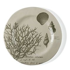 Our melamine plates have an organic shape and heavy-weight body that looks and feels like handcrafted ceramic! These casual and carefree pieces will allow you to entertain in style without worry, since they are durable and chip-resistant. Our exclusive design and livable color makes them very... see more details at https://bestselleroutlets.com/home-kitchen/kitchen-dining/dining-entertaining/plates/product-review-for-tag-beachcomber-bamboo-melamine-dinner-plate-durable-bpa-fr