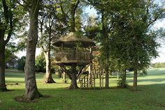 Tree houses come in all shapes and sizes:  * Magical children's playhouse   * Adventure playground     * Magical children's playhouse   * Adventure playground