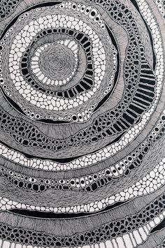 Zentangle-Doodling Northern Irish / Graphic Design Student / I Like Drawing / I Like Taking Photogra Zentangle Drawings, Doodles Zentangles, Zentangle Patterns, Doodle Drawings, Doodle Art, Mandala Drawing, Abstract Drawings, Zen Doodle, Pencil Drawings