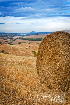 Bale of straw, morning around Montepulciano, Italy by Sebastian Kania, via 500px