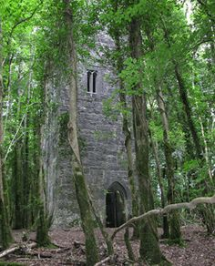 Guinness Tower at Ashford Castle, Cong, County Mayo. Ireland's hidden gems Ireland Vacation, Ireland Travel, Beautiful Castles, Beautiful Places, Ashford Castle, Abandoned Places, Abandoned Houses, Dream Vacations, Places To See