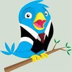 Hoe Werkt Twitter Zakelijk?