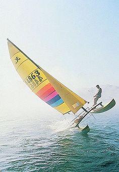 Catamaran de classe internationale HOBIE CAT 14