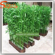 cheap outdoor wall decoration plastic artificial lucky bamboo tree plant branches for centerpieces outdoor and indoor, View bamboo tree, Songtao Product Details from Guangzhou Songtao Craft Artificial Tree Co., Ltd. on Alibaba.com