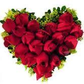 Rosas falam ao Coração