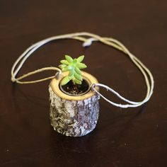 Hanging Planter Indoors Rustic Hanging Succulent by WoodlandFever