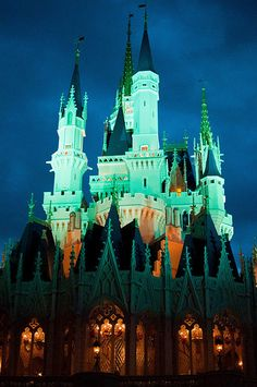 Having friends at Disney World right now and seeing their pics made me realize how much I love it even as an adult. #waltdisneyworld #ih8butterflies