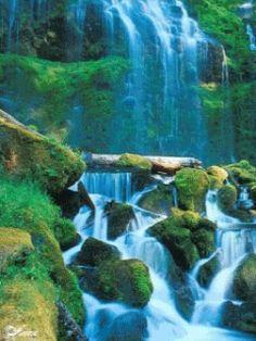 Jesus Cristo renovou minha vida: Devocional Dádivas do Senhor: JESUS é a garantia q...
