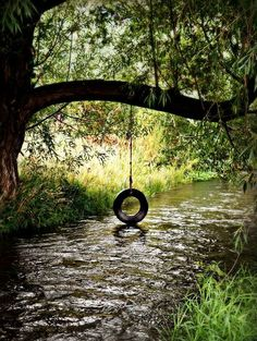Country Living: Nothing like a tire swing over a creek.