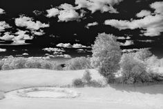Software Workshop: Fake Infrared Photography Using Adobe Camera Raw | Popular Photography