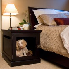 So awesome! A dog crate that looks like a nightstand, so it will fit perfectly in the decor of your room!    TownHaus Wood Designer Dog Crate Furniture by DenHaus - PetSmart.