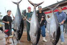 It's official, the giant yellowfin tuna caught on the Excel weighed in at 445 pounds.