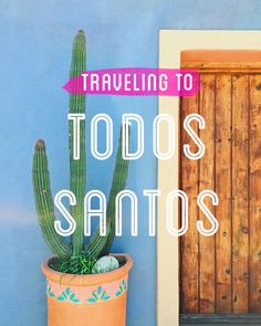 todos santos! what an adorable place to visit. we took a short little 4 days, 3 nights trip and loved it! here's everything we did and a few tips along the way… you fly into the los cabos airport,