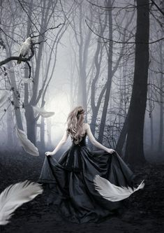 Just my version of girl in black with the raven. The White raven Dark Fantasy Art, Fantasy Magic, Fantasy World, Deep Photos, White Raven, Dark Princess, Beautiful Dark Art, Fantasy Photography, Goth Art