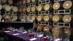 Wine Tasting 101: Glassware – Lil' Hidden Treasures
