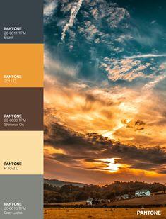 Palettes / Color : No. 21 Desktop Screenshot, Palette, Color, Colour, Pallets, Colors