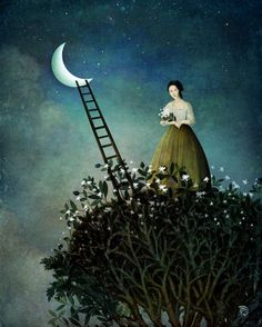 Midnight Garden by Christian Schloe.