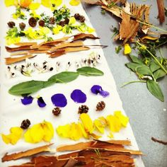 Back to Nature: Plant Dyes from Permacouture by Maria Finn