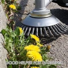 Break-Proof Wired Round Edge Weed Trimmer Blade Off Today Only! Lee Garden, Plastic Grass, Yard Tools, Diy Home Repair, Cool Inventions, Lawn Care, Weeding, Garden Projects, Backyard Landscaping