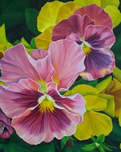 I like this - flowersgardenlove: Pansies by Amy Van S Flowers...