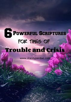 Stacey Pardoe | 6 Powerful Bible Verses for Times of Trouble and Grief - Stacey Pardoe Powerful Bible Verses, Bible Verses About Love, Encouraging Bible Verses, Bible Scriptures, Grief Scripture, Bible Quotes, Christian Encouragement, Spiritual Encouragement, Overcome The World