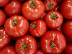 How to Store Tomatoes So They Stay Fresh For Longer Freezing Tomatoes, Tips For Growing Tomatoes, Storing Tomatoes, Canning Tomatoes, How To Store Tomatoes, Small Tomatoes, Fruits And Veggies, Vegetables, Storing Fruit
