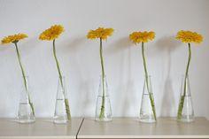 decor Free Realistic Photo DOWNLOAD (.jpg) :: http://vector-graphics.ovh/photo-cat-decor-0-gerbera-yellow-flower-decor-freeid-1323960i.html ... gerbera, yellow, flower ... decor gerbera, yellow, flower decor ideas design graphics inspiration home tips Realistic Photo Graphic Print Business Web Poster Vehicle Illustration Design Templates ... DOWNLOAD :: http://vector-graphics.ovh/photo-cat-decor-0-gerbera-yellow-flower-decor-freeid-1323960i.html