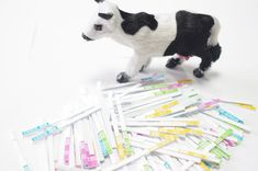 Cow milk test strips --Aflatoxin test strips rapid detection the Aflatoxin in cow milk , testing at room temperture ,without incubator . Inexpensive , and easy to use . Full Fat Milk, Raw Milk, Powdered Milk, Sheep, Cow, Kids Rugs, Buffalo, Safety