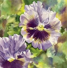 colorful pansies by Alfred Ng - Pesquisa Google