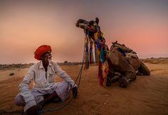 sunset at pushkar desert - Rajasthan India Rajasthan India, Camel, Deserts, Sunset, Animals, Beauty, Goa India, Animales, Animaux