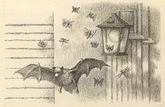 from The Bat-Poet by Randall Jarrell, pictures by Maurice Sendak Maurice Sendak, Hans Christian, Bat Images, Scary Bat, Bat Species, Art Thou, Typography Prints, Bats