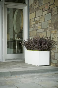 With false bottoms, our recycled and recyclable plastic Mondo Planters allow you to customize height, choosing either full depth for deeper rooted trees and shrubs or half the size plants. Great for your front porch, spring decorating, green thumb needs. #Loll #LollDesigns #recycledplastic #outdoorliving #outdoorfurniture #outdooraccessories #outdoorplanters #planters #spring #springinspo #springdecorating Modern Planters, Modern Patio, Stainless Steel Fasteners, Plastic Milk, Milk Jug, Recycled Materials, Curb Appeal, Container Gardening, Home And Garden