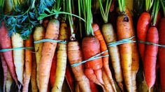 Summer Farm To Fork Gala At Topping Rose House To Support Hamptons Food Pantry Farm | Food And Wine | Food News