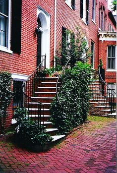 Georgetown (DC) rowhomes